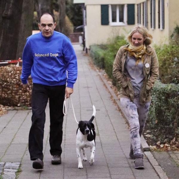 Hundetraining und Verhaltensberatung mit Dirk Keyman